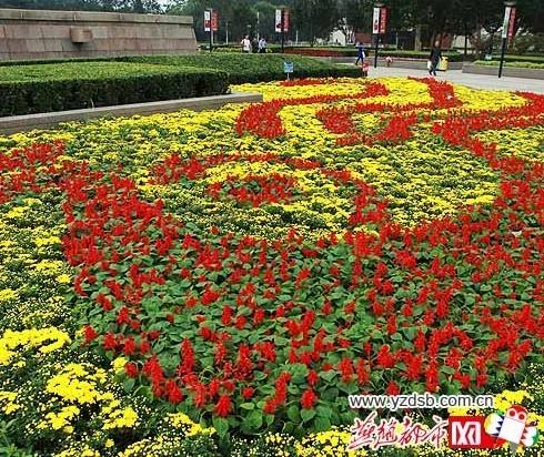 今年国庆节 唐山鲜花摆放显节俭